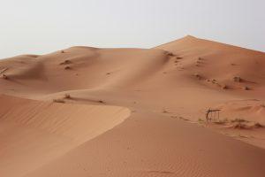 Sulle dune del Sahara