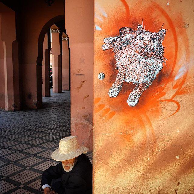 C215 in Marrakech