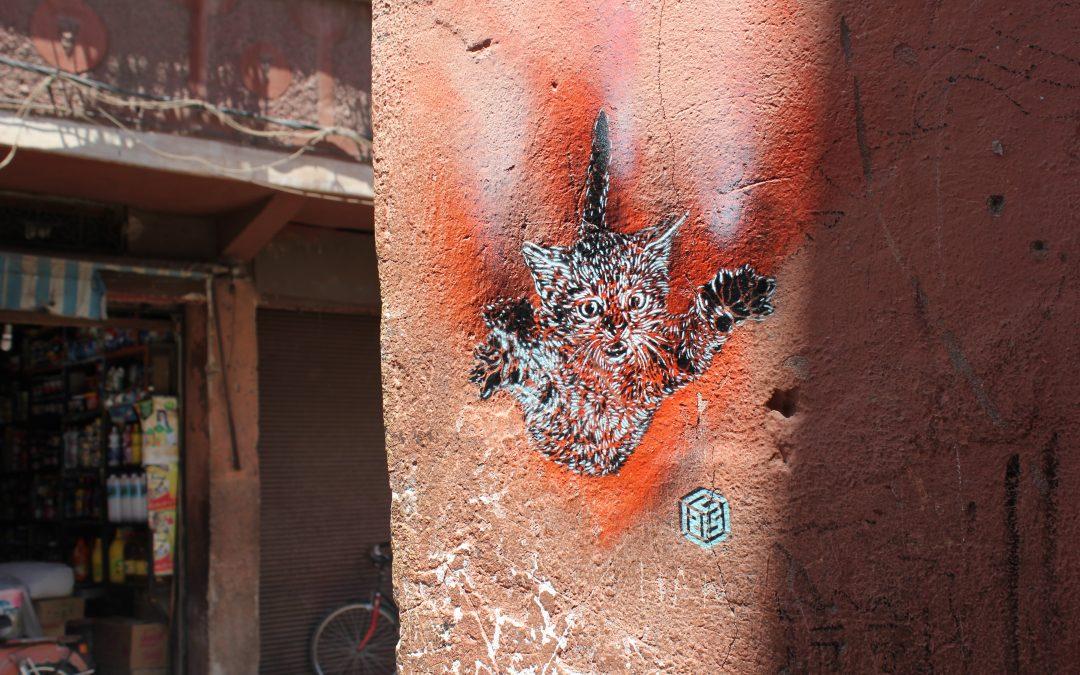 I gatti di Christian Guemy, C215 in Marrakech