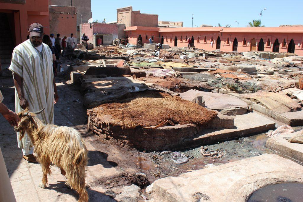 Le concerie di Marrakech